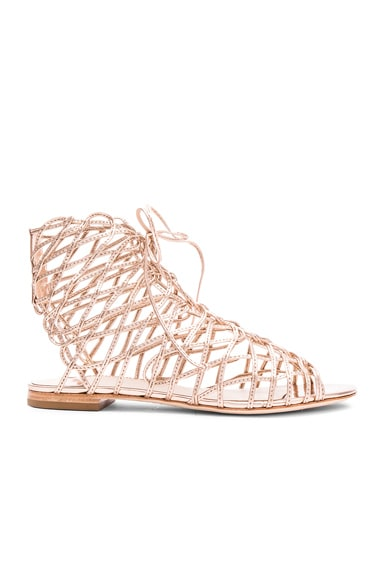 Sophia Webster Delphine Gladiator in Gold