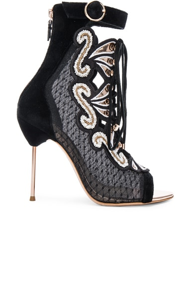 Sophia Webster Selina Sandal Booties in Black & Gold
