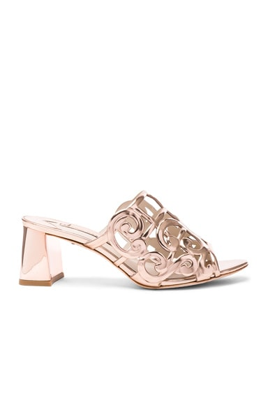 Sophia Webster Leather Birdie Mules in Rose Gold