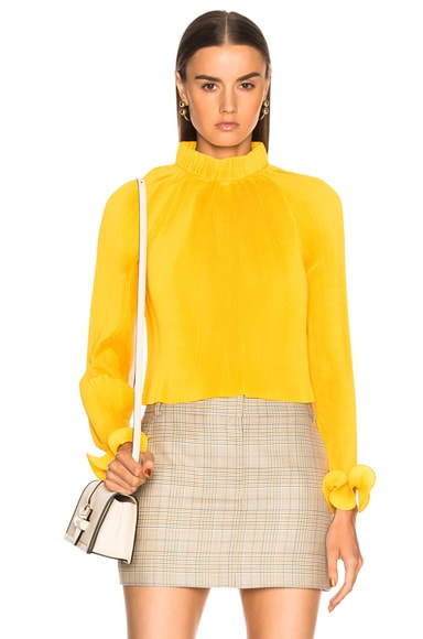Pleated Crop Top