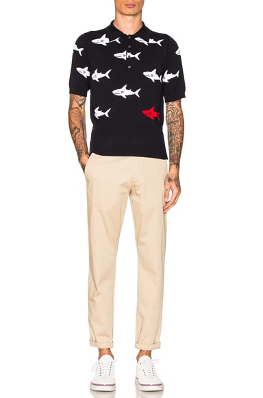 Shark Intarsia Polo