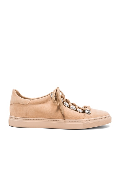 TOGA PULLA Studded Suede Sneakers in Almond Suede