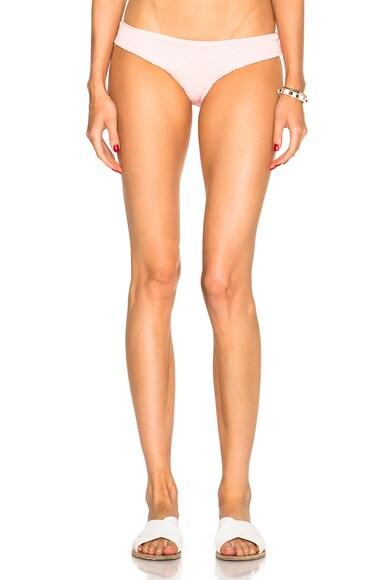 Oaxaca Bikini Bottom