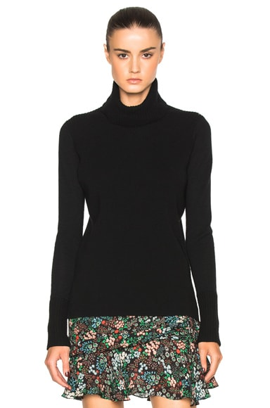 Asa Turtleneck Sweater