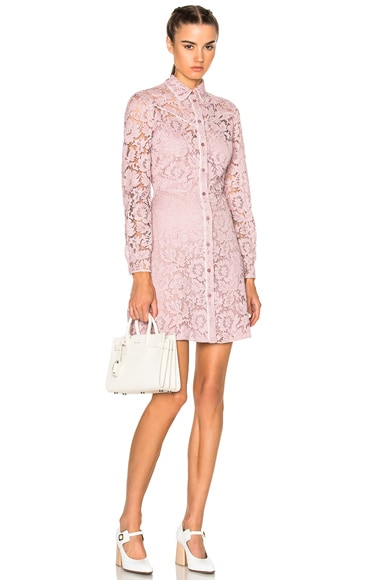 Valentino Lace Button Down Dress in Cipria & Ivory