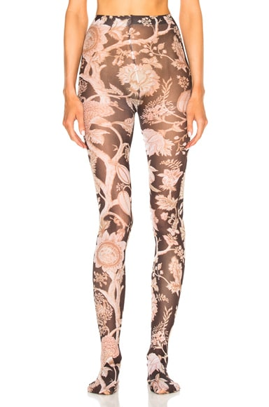 Zimmermann Paisley Chintz Leggings in Pink