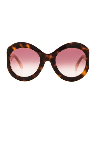 Zanzan Le Tabou Sunglasses in Havana & Blush