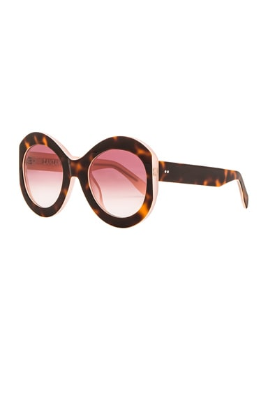 Le Tabou Sunglasses