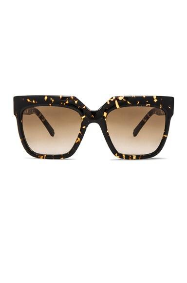 Zanzan Vesuvio Sunglasses in Treacle Tortoise
