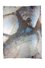Fish Scarf