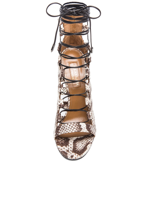 Image 4 of Aquazzura Amazon Elaphe Snakeskin Heels in Roccia