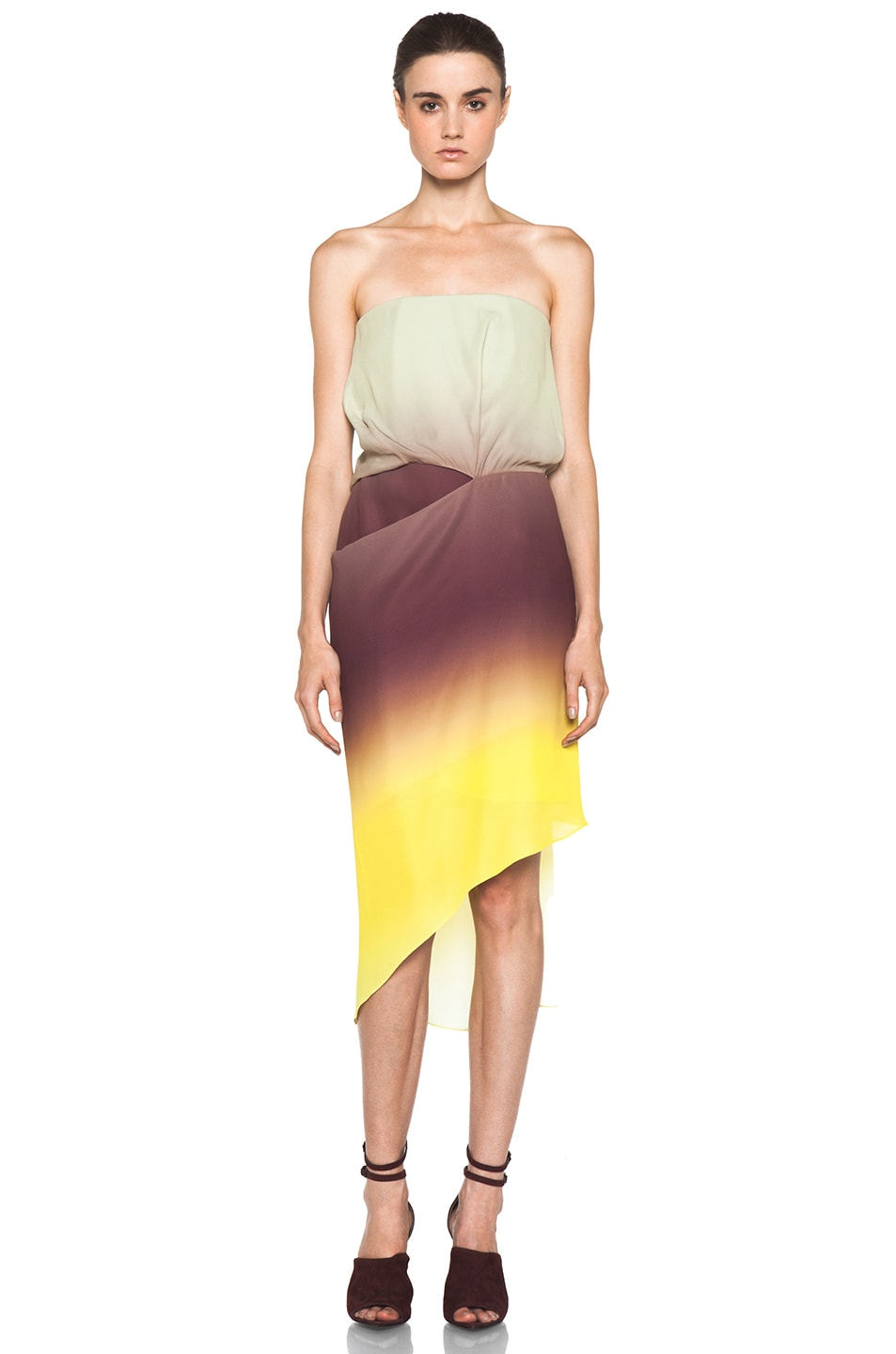 Image 1 of Acne Studios Anya Degrade Dress in Degrade