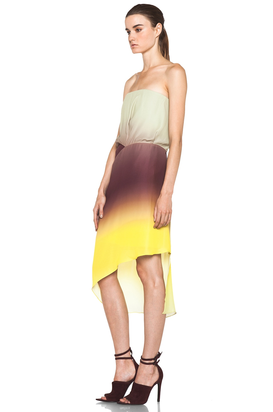 Image 2 of Acne Studios Anya Degrade Dress in Degrade