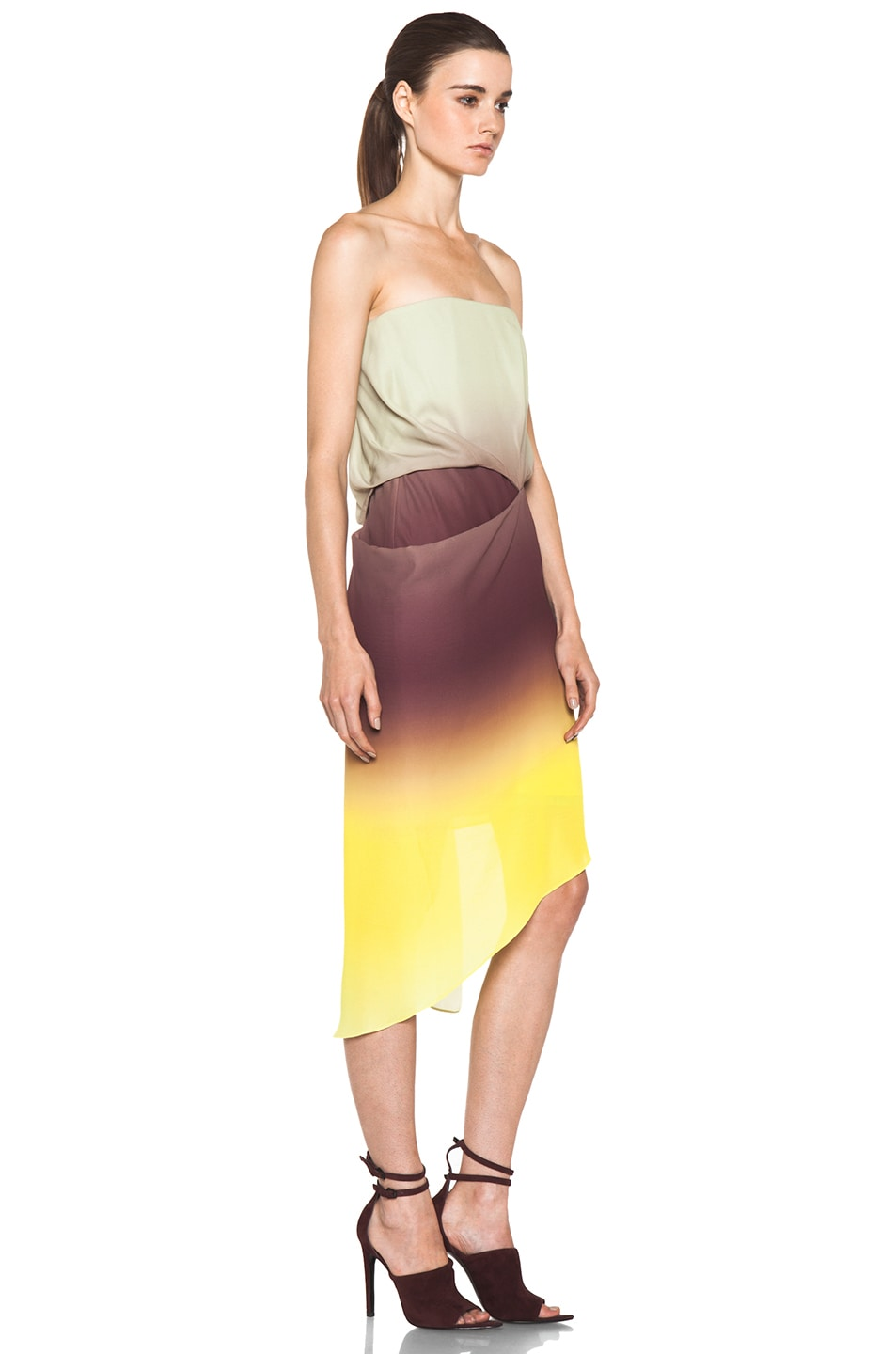 Image 3 of Acne Studios Anya Degrade Dress in Degrade