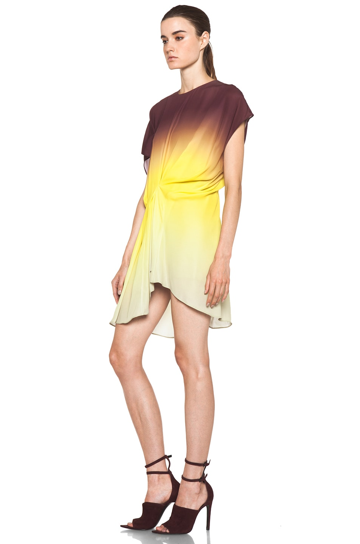 Image 2 of Acne Studios Alana Degrade Dress in Degrade