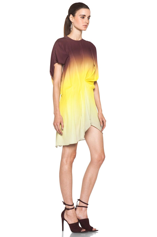 Image 3 of Acne Studios Alana Degrade Dress in Degrade