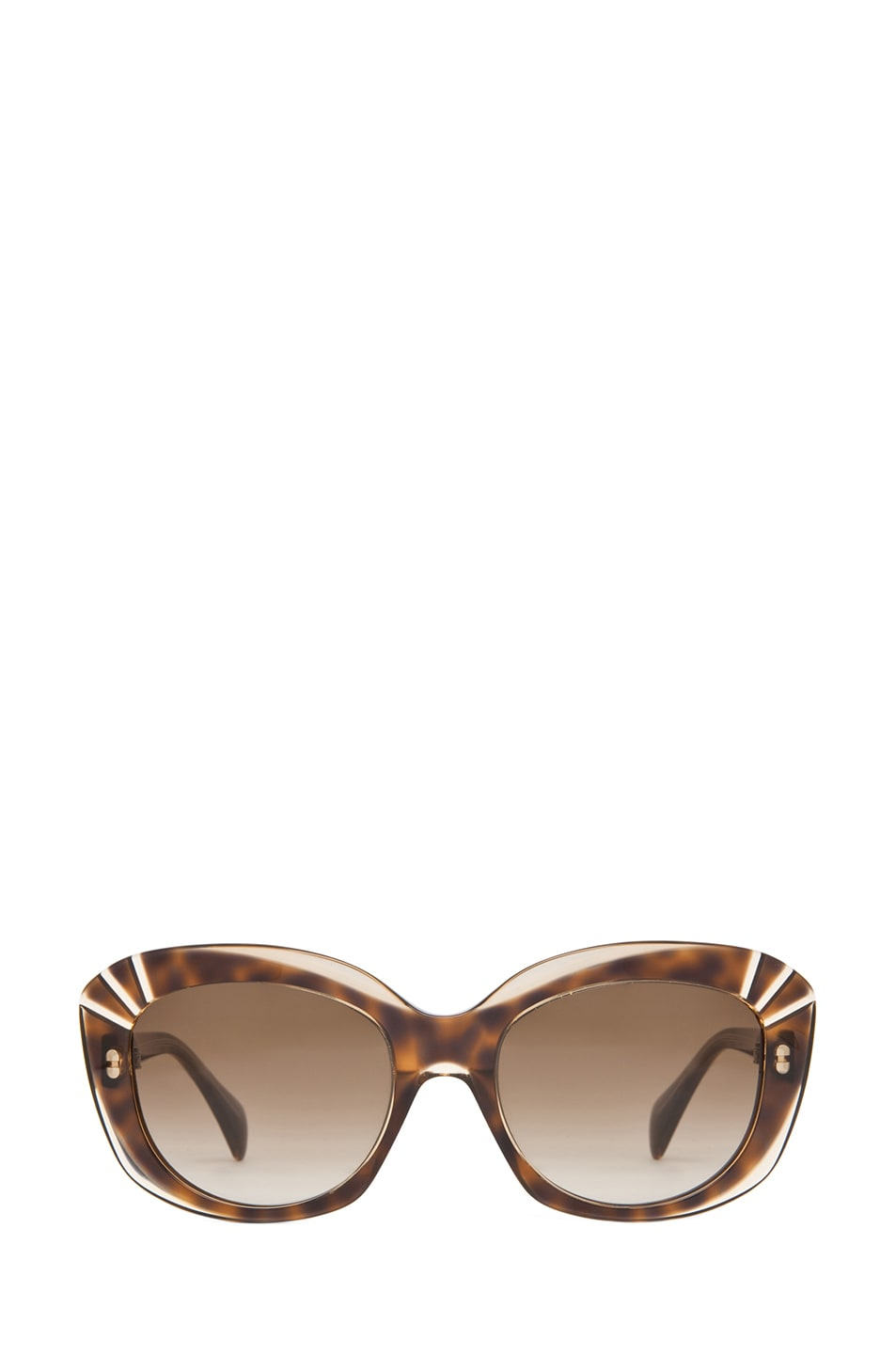 Image 1 of Alexander McQueen 4214 Sunglasses in Champagne Havana & Brown Gradient