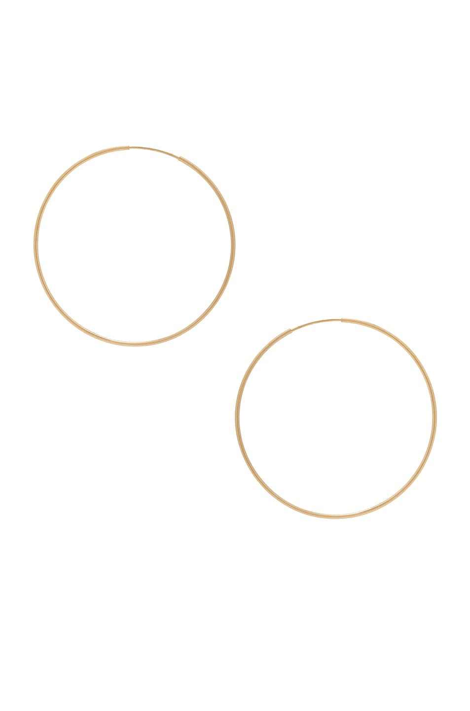 Image 1 of ERTH 14K Gold Hoop II Earring in Gold