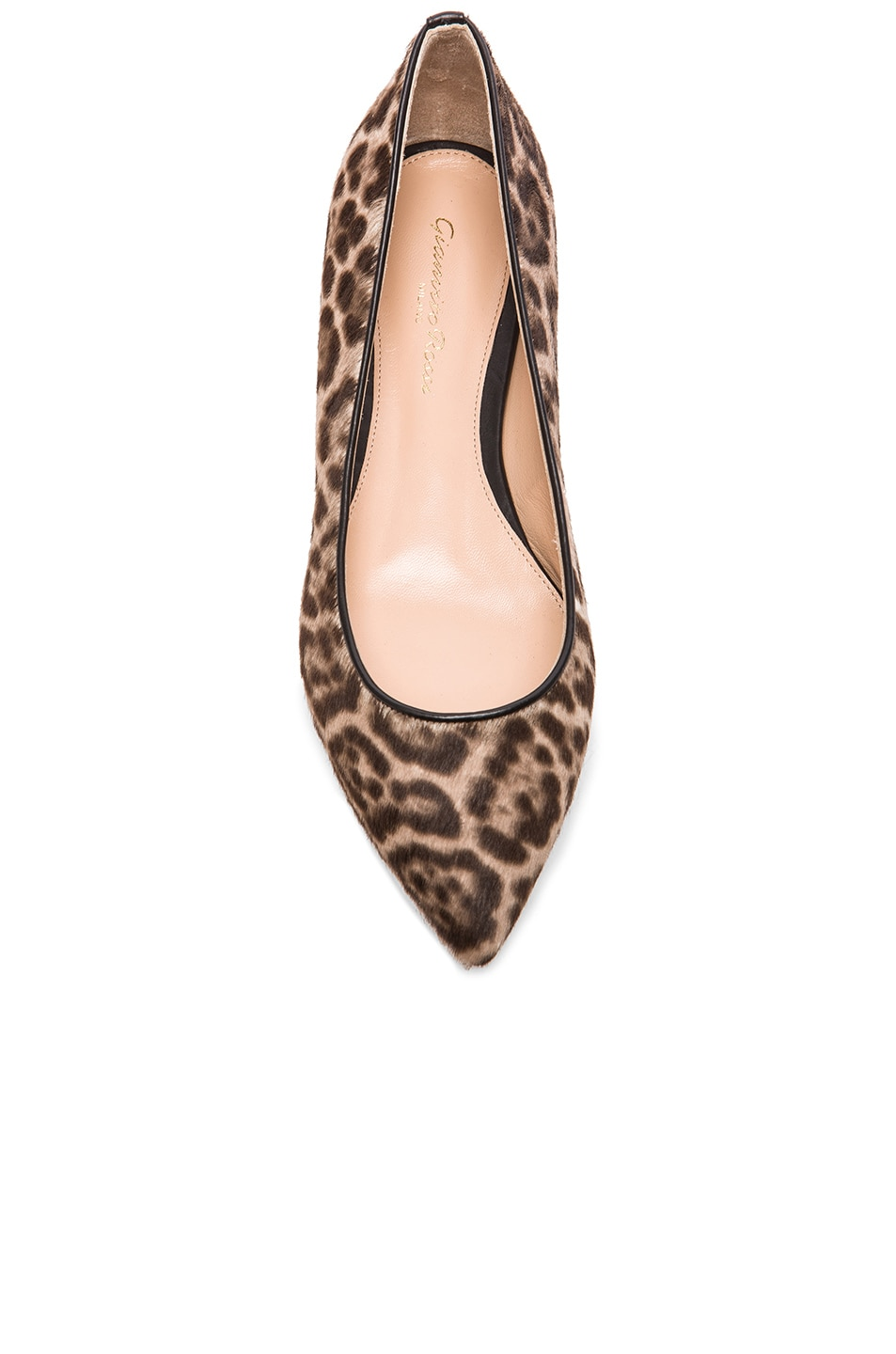 Image 4 of Gianvito Rossi Pointed Flats in Lynx Pony Hair