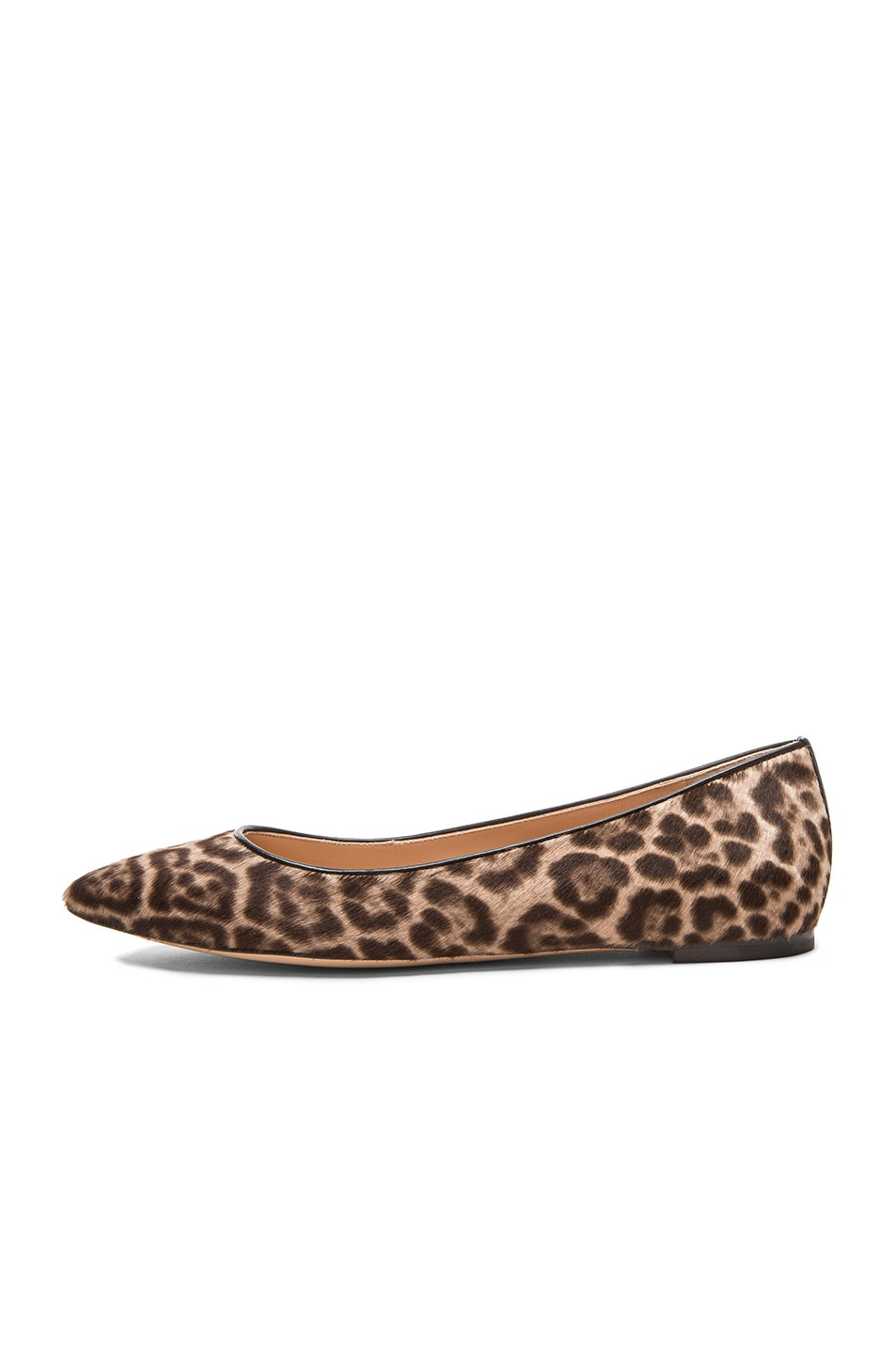 Image 5 of Gianvito Rossi Pointed Flats in Lynx Pony Hair
