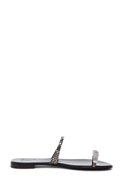 Image 5 of Giuseppe Zanotti Sandal in Gunsmoke