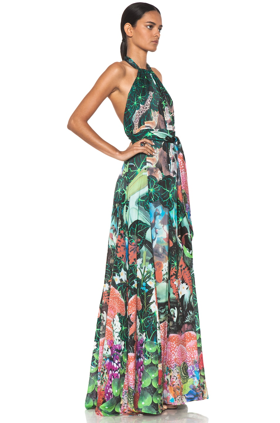 Image 3 of Issa Maxi Dress in Multi