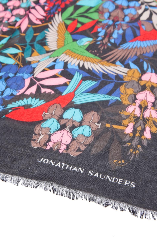 Image 3 of Jonathan Saunders Bird Cashmere/Silk Scarf in Multi Black