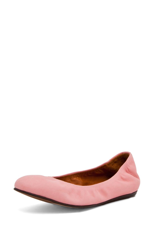 Image 1 of Lanvin Ballerina Flat in Pink