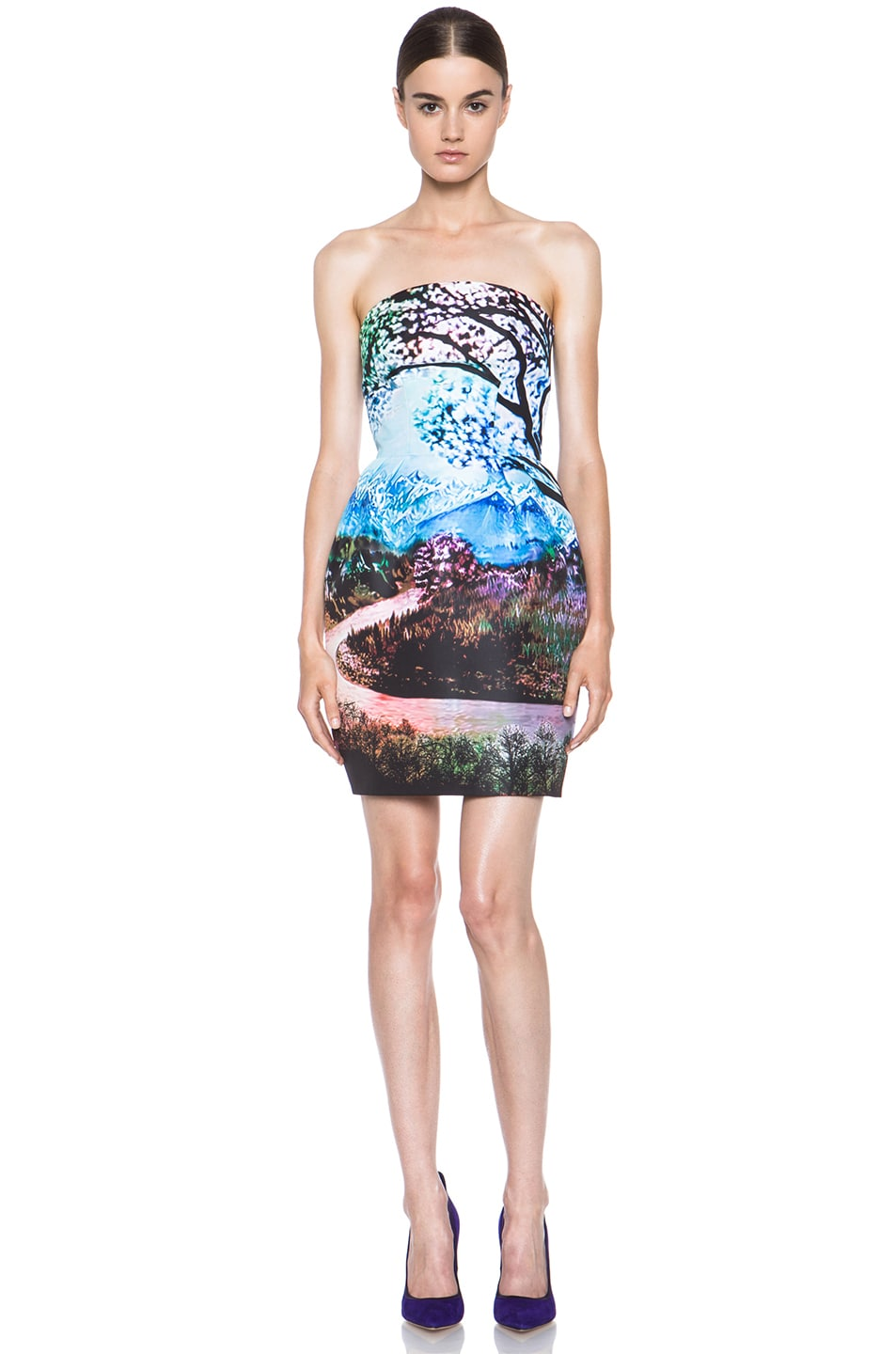 Image 1 of Mary Katrantzou Poly Puff Dress in Fauwi