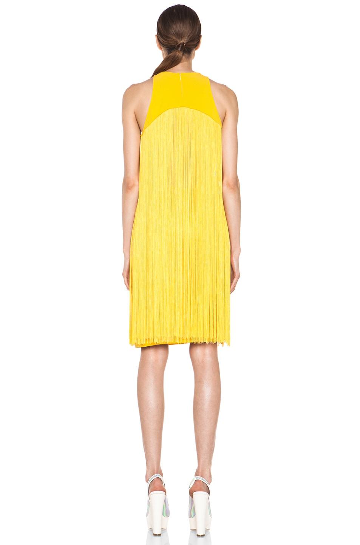 Image 4 of Stella McCartney Mix Cady Lace Fringe Dress in Citrus