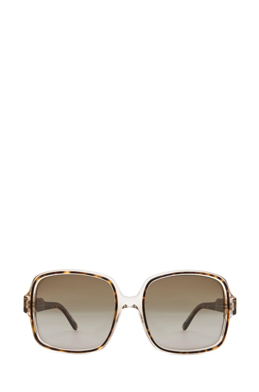 Image 1 of Stella McCartney Sunglasses in Havana