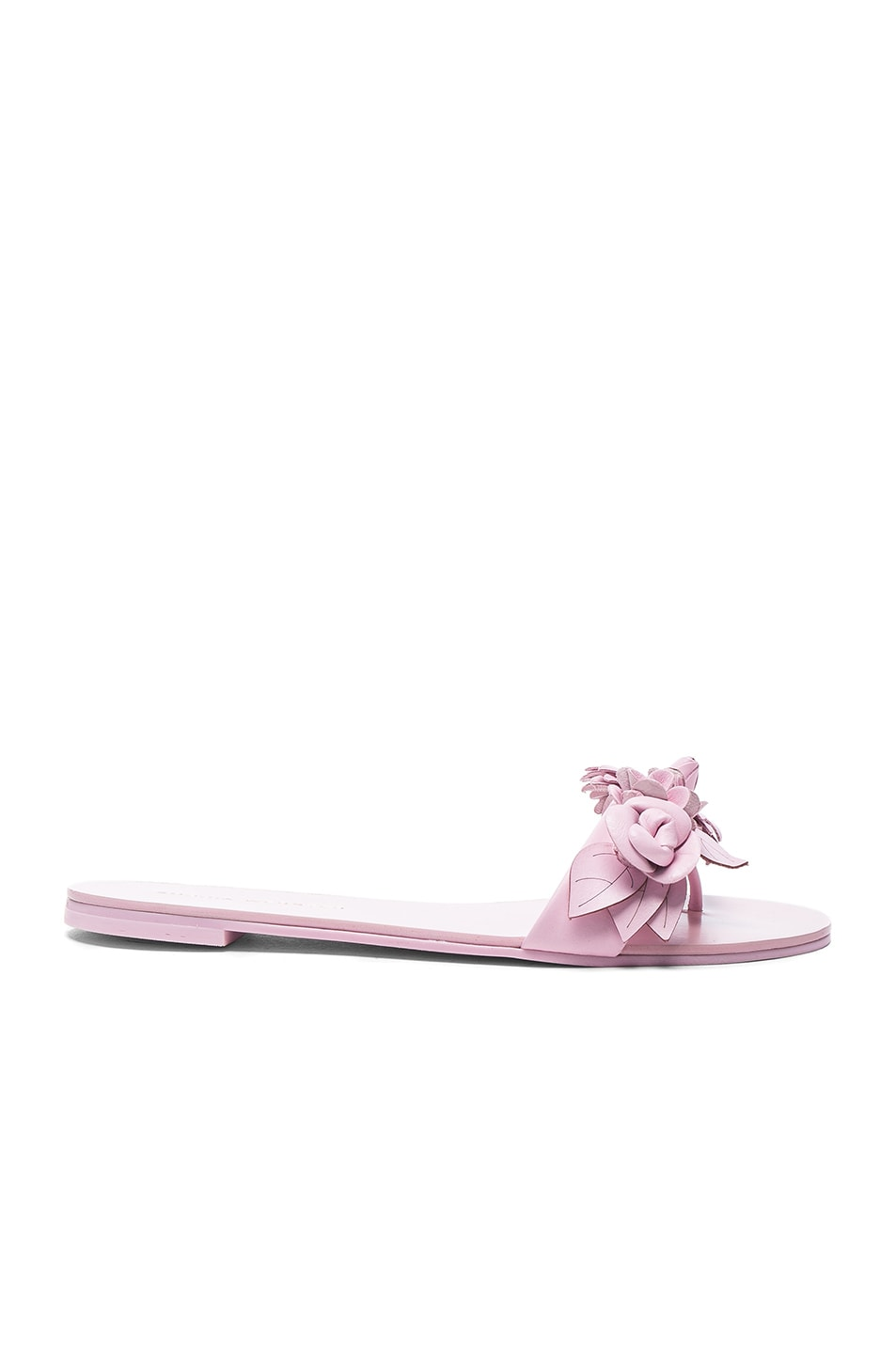 Image 1 of Sophia Webster Leather Lilico Sandals in Pink