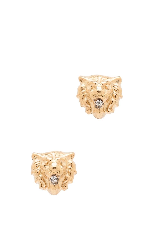 Image 1 of Tom Binns Lion Plated Earrings in Gold