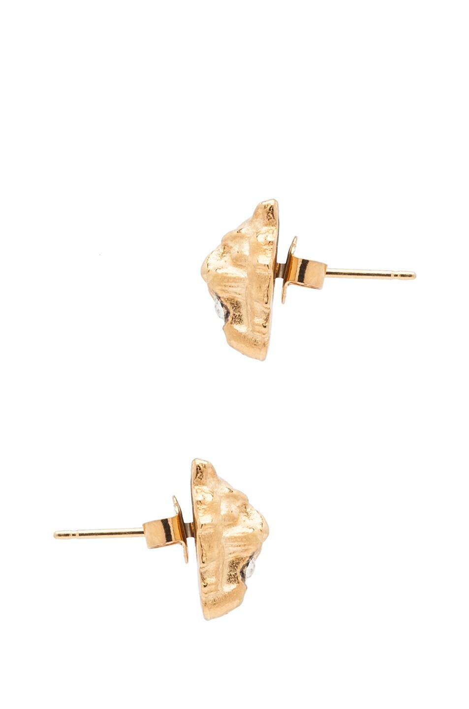 Image 2 of Tom Binns Lion Plated Earrings in Gold