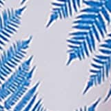 Blue Fern Hawaii