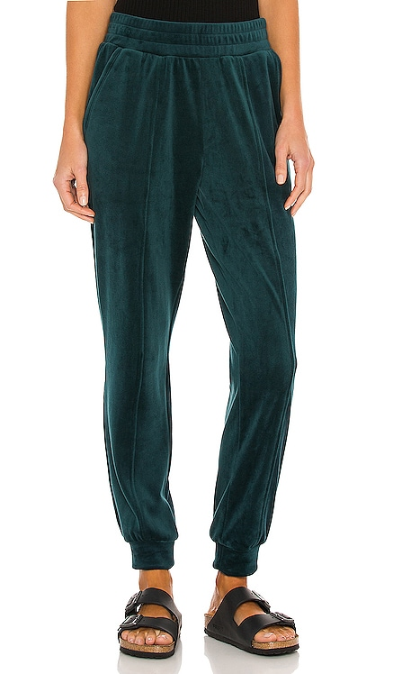 Velour Pant 1. STATE $79 NEW