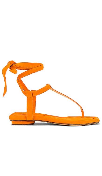 Clarita Summer T. Sandal Alexandre Birman $425