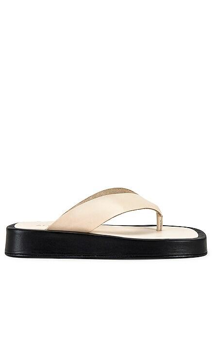 Overcast Sandal ALOHAS $169 NEW