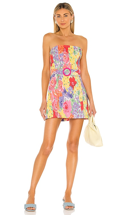 Fae Dress Amanda Uprichard $229 NEW