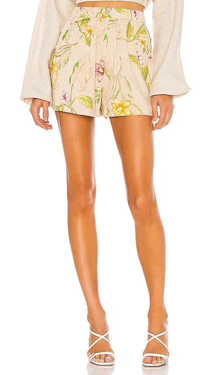 Courtyard Woven Short AMUSE SOCIETY $54