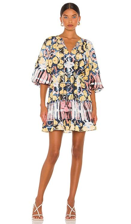 Kasi Dress Alexis $398 NEW