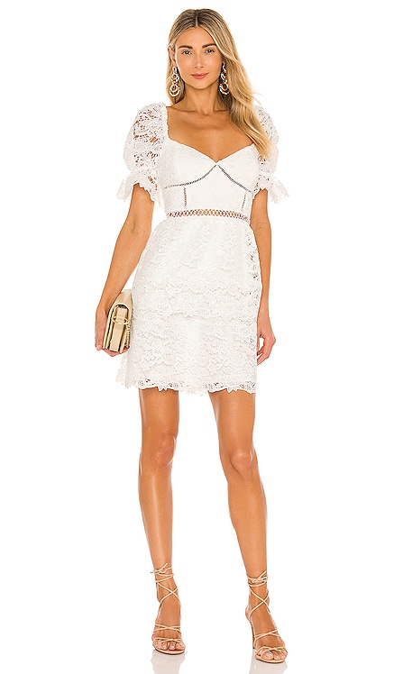 Charlotte Lace Dress Bardot $189 NEW
