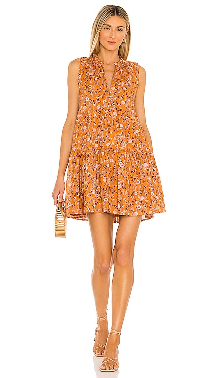 Sunny Disposition Dress BB Dakota by Steve Madden $89 NEW