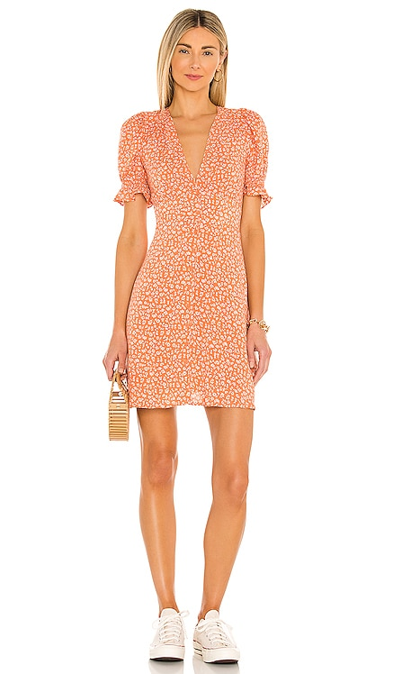 Honeypie Dress BB Dakota by Steve Madden $79 NEW