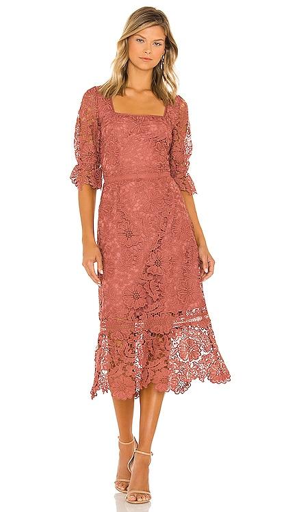 Did It My Way Dress BB Dakota by Steve Madden $119 BEST SELLER