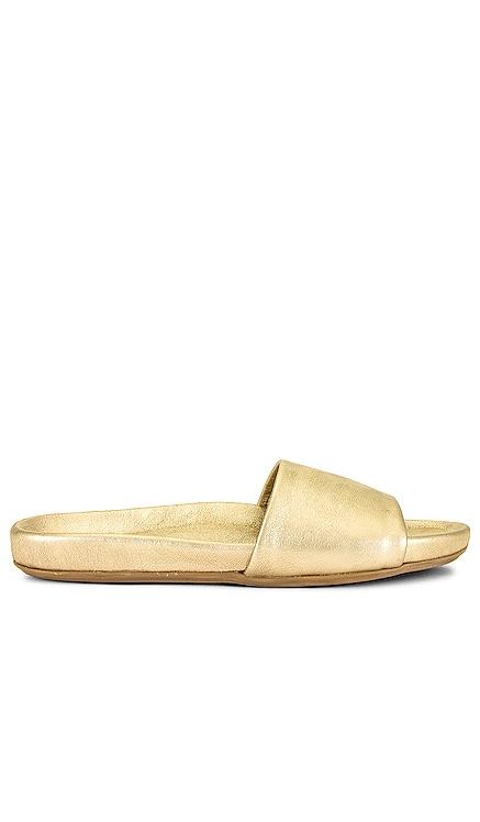 Gallito Slide Beek $240 NEW