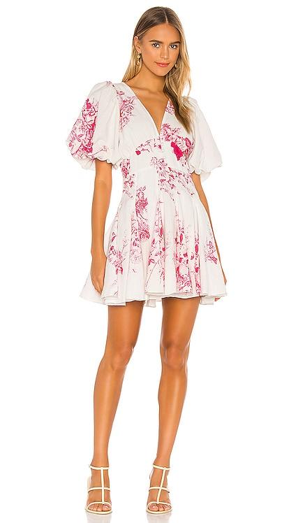 Brie Dress HEMANT AND NANDITA $396