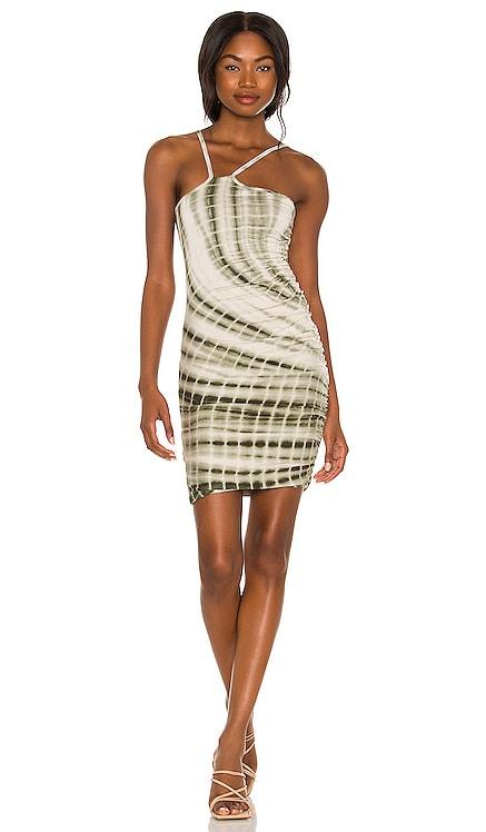 Toni Dress By Dyln $100 NEW