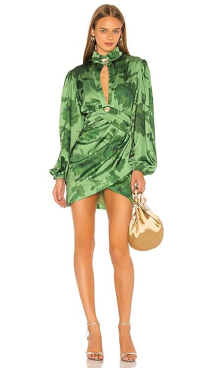Renew Dress C/MEO $114