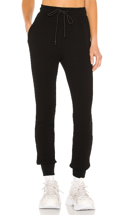 The Monaco Thermal Jogger COTTON CITIZEN $165 NEW
